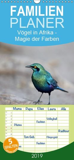 Vögel in Afrika – Magie der Farben – Familienplaner hoch (Wandkalender 2019 , 21 cm x 45 cm, hoch) von Herzog,  Michael