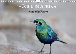Vögel in Afrika – Magie der Farben (Wandkalender 2018 DIN A4 quer) von Herzog,  Michael