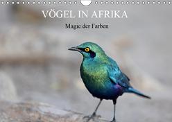 Vögel in Afrika – Magie der Farben (Wandkalender 2019 DIN A4 quer) von Herzog,  Michael