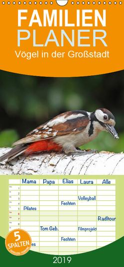Vögel in der Großstadt – Familienplaner hoch (Wandkalender 2019 , 21 cm x 45 cm, hoch) von Konieczka,  Klaus