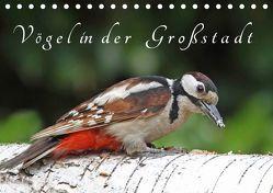 Vögel in der Großstadt (Tischkalender 2019 DIN A5 quer) von Konieczka,  Klaus