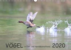 Vögel in Ost- und Norddeutschland 2020 (Wandkalender 2020 DIN A3 quer) von Jansen,  Rolf