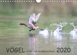 Vögel in Ost- und Norddeutschland 2020 (Wandkalender 2020 DIN A4 quer) von Jansen,  Rolf