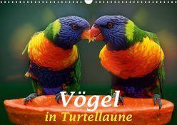 Vögel in Turtellaune (Wandkalender 2019 DIN A3 quer) von Brunner-Klaus,  Liselotte