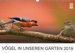 Vögel in unseren Gärten 2019 (Wandkalender 2019 DIN A3 quer) von Klapp,  Lutz