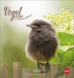 Vögel in unseren Gärten Postkartenkalender 2022 von Heye