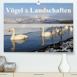 Vögel & Landschaften (Premium, hochwertiger DIN A2 Wandkalender 2020, Kunstdruck in Hochglanz) von birdimagency.com