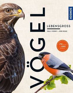 Vögel lebensgroß (Großformat) von Read,  Rob, Sterry,  Paul