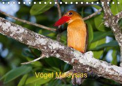 Vögel Malaysias – Birds of Malaysia (Tischkalender 2019 DIN A5 quer) von D. Weinand,  Ralf
