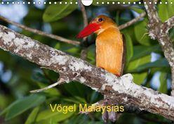 Vögel Malaysias – Birds of Malaysia (Wandkalender 2018 DIN A4 quer) von D. Weinand,  Ralf