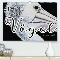 Vögel Schwarzweiß Photo Art (Premium, hochwertiger DIN A2 Wandkalender 2020, Kunstdruck in Hochglanz) von Sachers,  Susanne