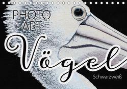 Vögel Schwarzweiß Photo Art (Tischkalender 2019 DIN A5 quer) von Sachers,  Susanne