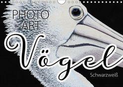Vögel Schwarzweiß Photo Art (Wandkalender 2019 DIN A4 quer) von Sachers,  Susanne