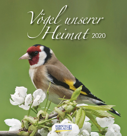 Vögel unserer Heimat 2020