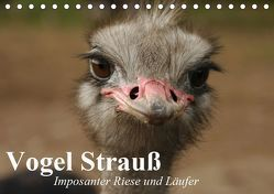 Vogel Strauß. Imposanter Riese und Läufer (Tischkalender 2019 DIN A5 quer) von Stanzer,  Elisabeth