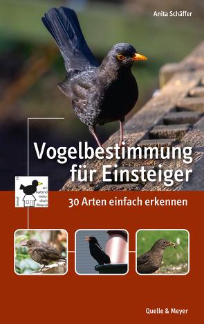 Vogelbestimmung für Einsteiger von Schäffer,  Anita