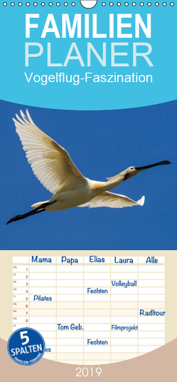 Vogelflug-Faszination – Familienplaner hoch (Wandkalender 2019 , 21 cm x 45 cm, hoch) von Eisenreich,  Wilhelm