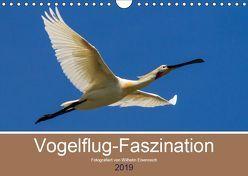 Vogelflug-Faszination (Wandkalender 2019 DIN A4 quer) von Eisenreich,  Wilhelm
