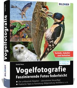 Vogelfotografie von Detlef,  Hase
