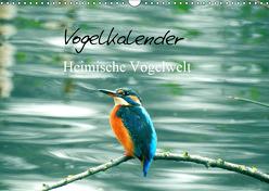 Vogelkalender (Wandkalender 2019 DIN A3 quer) von Fofino