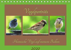 Vogelporträts – Heimische Vögel auf meinem Balkon (Tischkalender 2020 DIN A5 quer) von Schimmack,  Claudia