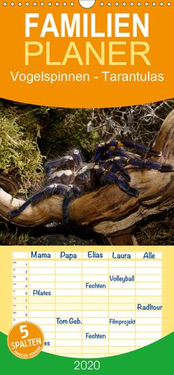 Vogelspinnen – Tarantulas – Familienplaner hoch (Wandkalender 2020 , 21 cm x 45 cm, hoch) von Trapp,  Benny