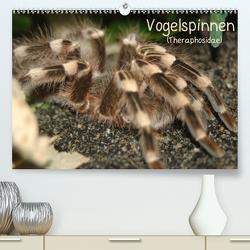 Vogelspinnen (Theraphosidae)CH-Version (Premium, hochwertiger DIN A2 Wandkalender 2020, Kunstdruck in Hochglanz) von Mielewczyk,  Barbara