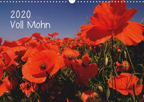 Voll Mohn (Wandkalender 2020 DIN A3 quer) von Möller,  Michael