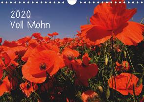 Voll Mohn (Wandkalender 2020 DIN A4 quer) von Möller,  Michael