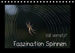 Voll vernetzt – Faszination Spinnen (Tischkalender 2018 DIN A5 quer) von Enkemeier,  Sigrid
