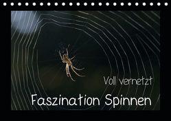 Voll vernetzt – Faszination Spinnen (Tischkalender 2019 DIN A5 quer) von Enkemeier,  Sigrid