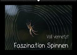 Voll vernetzt – Faszination Spinnen (Wandkalender 2018 DIN A2 quer) von Enkemeier,  Sigrid