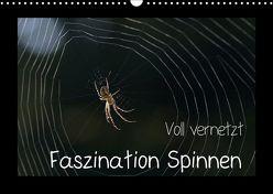 Voll vernetzt – Faszination Spinnen (Wandkalender 2018 DIN A3 quer) von Enkemeier,  Sigrid