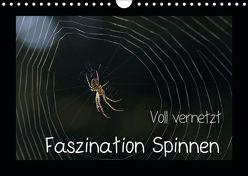 Voll vernetzt – Faszination Spinnen (Wandkalender 2019 DIN A4 quer) von Enkemeier,  Sigrid
