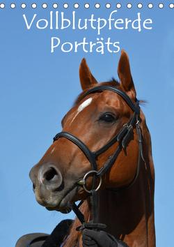 Vollblutpferde Porträts (Tischkalender 2021 DIN A5 hoch) von van Wyk - www.germanpix.net,  Anke