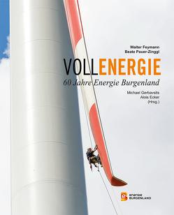 Vollenergie von Feymann,  Walter, Pauer-Zinggl,  Beate