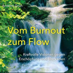 Vom Burnout zum Flow von Grün,  Anselm, Wostry,  Axel