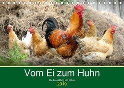 Vom Ei zum Huhn. Die Entwicklung von Küken (Tischkalender 2019 DIN A5 quer) von Hurley,  Rose