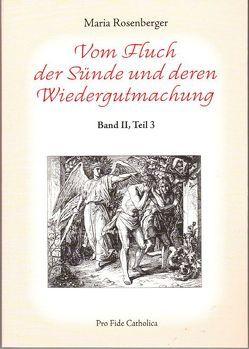 Vom Fluch der Sünde und deren Wiedergutmachung von Rosenberger,  Maria