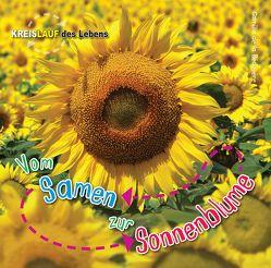 Vom Samen zur Sonnenblume, Kreislauf des Lebens von de la Bedoyere,  Camilla