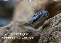 Vom Schlängeln, Kriechen und Sprinten (Wandkalender 2018 DIN A2 quer) von Krieger,  Peter