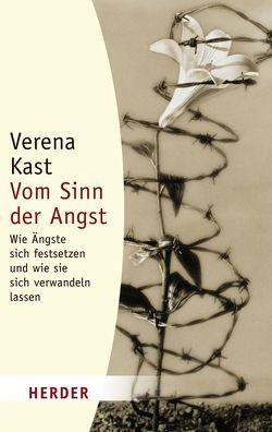 Vom Sinn der Angst von Kast,  Verena