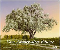 Vom Zauber alter Bäume 2019 – Foto-Kunst – Querformat 58,4 x 48,5 cm – Spiralbindung von DUMONT Kalenderverlag, Wohner,  Heinz