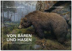 Von Bären und Hasen von Hevers,  Jürgen, Mothes,  Wolfgang
