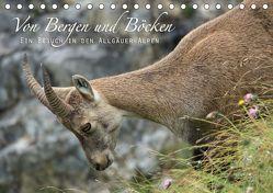Von Bergen und Böcken (Tischkalender 2019 DIN A5 quer) von Schaefgen,  Matthias