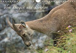 Von Bergen und Böcken (Wandkalender 2018 DIN A4 quer) von Schaefgen,  Matthias