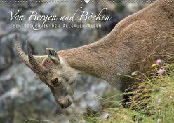 Von Bergen und Böcken (Wandkalender 2019 DIN A2 quer) von Schaefgen,  Matthias