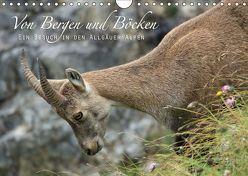 Von Bergen und Böcken (Wandkalender 2019 DIN A4 quer) von Schaefgen,  Matthias