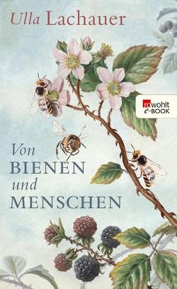 Von Bienen und Menschen von Lachauer,  Ulla