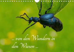 … von den Wundern in den Wiesen … (Wandkalender 2020 DIN A4 quer) von Kron (la Frippi),  Frances